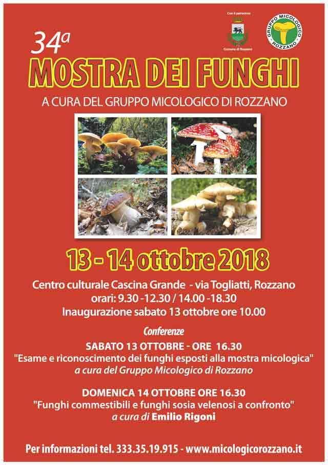 Calendario Funghi.Home Page
